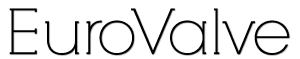 Eurovalve 2021 Logo